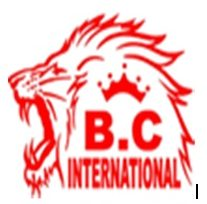 B C INTERNATIONAL HIGH SCHOOL